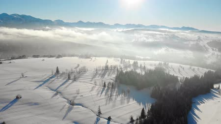 aydınlatmalı : Drone view of snowy valley in mountains with trees in haze and bright sunlight
