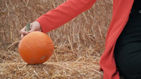 young girl chooses a pumpkin for halloween Vídeos