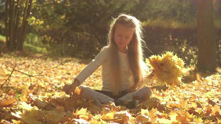 Little girl collecting yellow leaves while sitting crossed legged on ground in autumn park Vídeos
