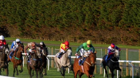 horse racing : Close up, slow motion view of a group of horses racing Stock Footage