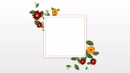 редактируемые : Blank frame with flower against white background 4k