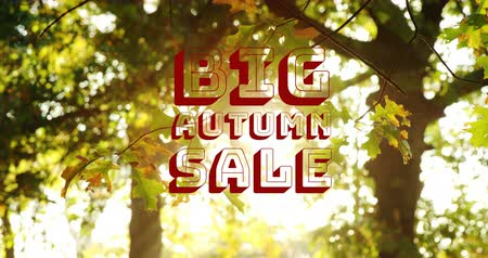 autumn discounts : Digitally generated video of autumn sale concept 4k