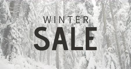 inovador : Digitally generated video of winter sale against snowfall 4k