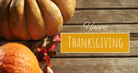 dijital oluşturulan görüntü : Digitally generated video of happy thanksgiving concept 4k