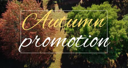 változatosság : Digitally generated video of autumn promotion concept 4k Stock mozgókép