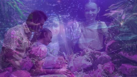 комбинированный : Digital composite of Science Composition Family watching fishes in the aquarium combined with a photo of two kids watching lobsters colored in purple and pink
