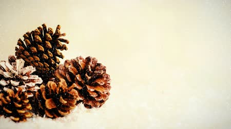 sahte : Digital composite of Fir cones combined with falling snow Stok Video