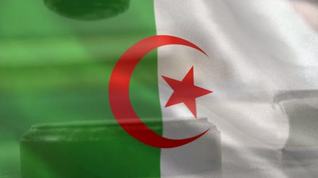 algeria : Digitally composite of Algerian Flag and gavel. Judges gavel banging on sounding block 4k Stock Footage