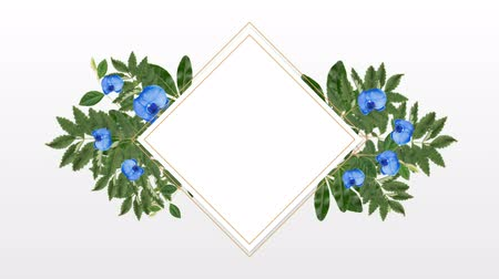 lozenge : Square photo frame for copy space with decorative blue flowers against white background