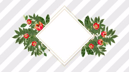 редактируемые : square photo frame for copy space with decorative rose flowers against white background Стоковые видеозаписи