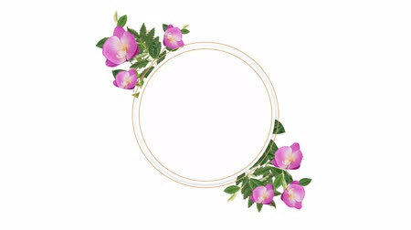 oválný : Circle photo frame for copy space with decorative pink flowers against pattern background