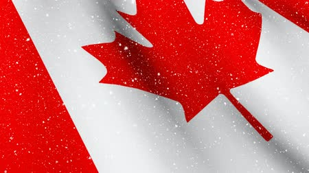 urlop : Digital composite of Canadian flag waving with animated snow falling down Wideo