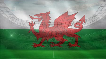 resimlerinde : Flag of Wales in a full stadium with flashes from public taking pictures