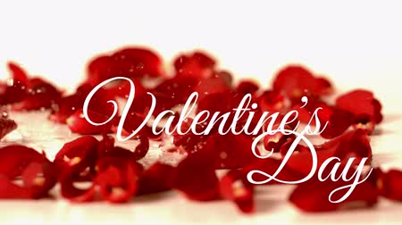 fondness : Front view of Valentines day animation with red flower background and dynamic water drop