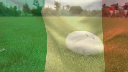 rugby ball : Digital composite of multi-ethnics rugby players doing physical exercises without the ball on a field with an Irish flag waving on the foreground Stock Footage
