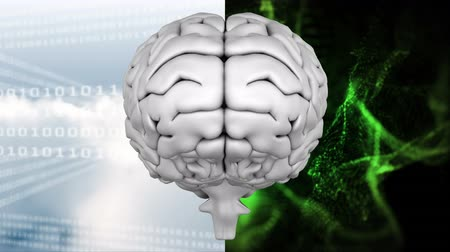 ассоциация : Digitally animated of a white digital brain with a cloudy sky background full of binary code on the left side and with a dark background of animated green light effects on the right side