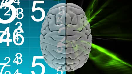 mastermind : Digital composite of grey brain with two different background, the left one is composed of white binary codes in blue background and the right side with a animated green light effects against a black background