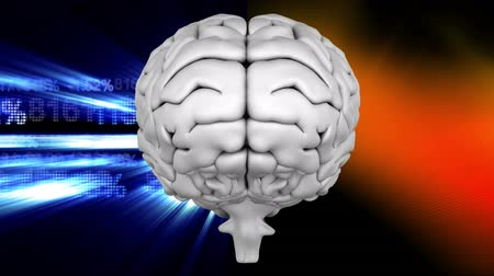 mastermind : Digital animation white brain with two backgrounds, on the left side the background is a binary codes against blue square, on the right side a black background with blurred colored line moving in the space Stock Footage