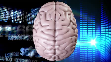 mastermind : Digitally animated pink brain with two different backgrounds, the left one composed of financial data, the right one with blue light effects. Stock Footage
