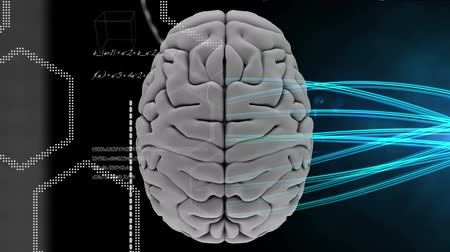 matter : Digital animation of a grey digital brain with a hexagon shape on the left side and with blue lighting ray on the right side on black background