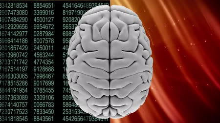 adaptacion : Digitally animated of grey brain with two different background, the left one composed of grey binary codes and the right side with stars in orange sky Archivo de Video