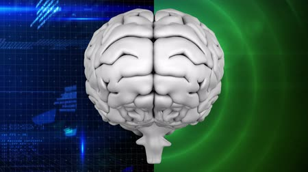 мысль : Digitally animated of grey brain with two different background, the left one composed of blue technology dash board and the right side with green blinking circle