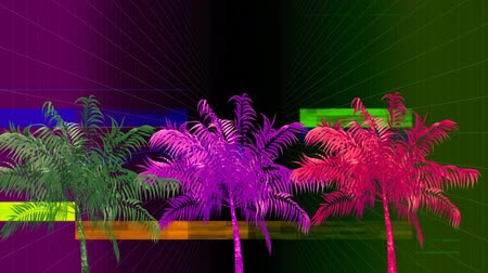экзотичность : Front view of multi coloured palm trees against crackling in black background Стоковые видеозаписи