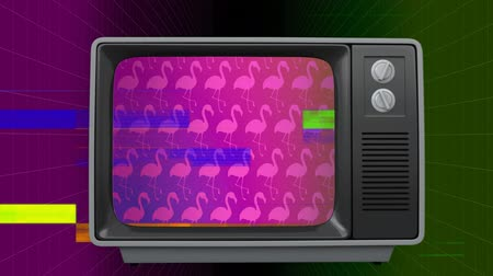 flamingi : Front view of an old TV switch on with pink flamingos on screen against sizzling in a coloured background Wideo