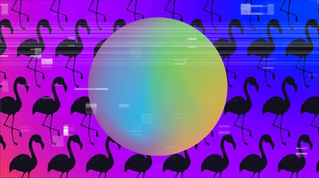 フラミンゴ : Digital composite of big ball with gradient colors. Black flamingo on background and sizzle filter 動画素材