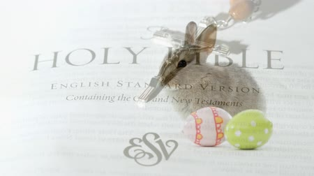 evangélium : Digital composite of easter bunny with easter eggs. Holy bible in the background and crucifix falls.
