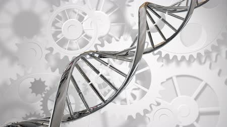 biyolojik : Digitally generated double helix DNA moving while gears moves in white background.
