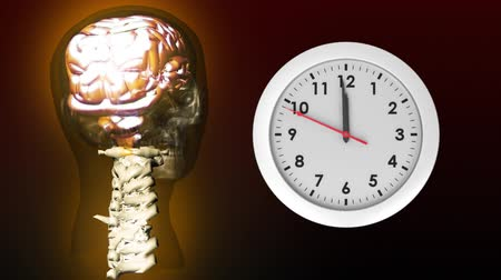 ассоциация : Digitally generated clock with hands moving while anatomy of human head shows the brain, skull, and cervical spine Стоковые видеозаписи