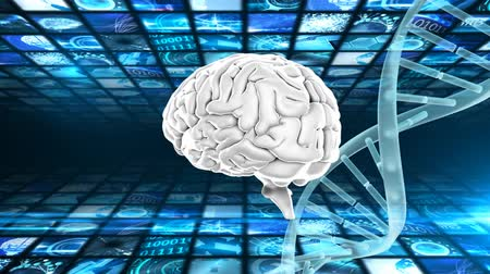 temporal : Digitally generated brain and double helix dna strand while rotating against a square pattern background Stock Footage