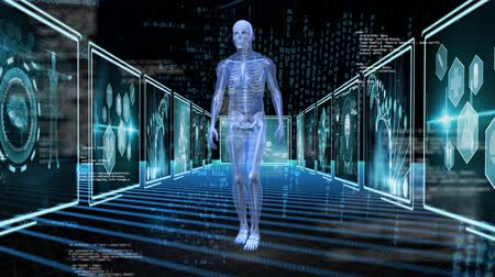 representação : Digitally generated human anatomy walking around. Background shows screen with different medical information.