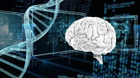 atomic model : Digitally generated human brain and dna double helix strand rotates. Background shows different screen with different information