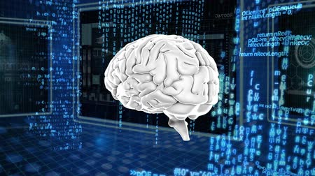 lobe : Digitally generated human brain rotating. background shows different digital information Stock Footage