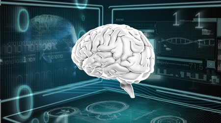 temporal : Digitally generated rotating human brain with binary codes. Background shows two screns