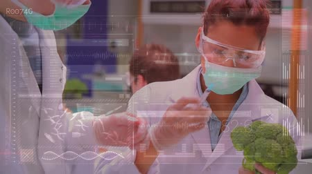 brócolis : Close up of Caucasian male and female scientists studying a broccoli while wearing face masks. Semi transparent equations are running in the foreground. Other scientists are also working in the background