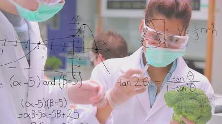 examining : Close up of Caucasian male and female scientists studying a broccoli while wearing face masks. Equations are running in the foreground. Other scientists are also working in the background