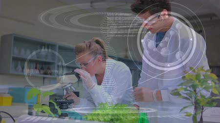forensic science : Close up of a male and female Caucasian scientist conducting research in a lab. One scientist is gazing in the microscope while the other is assisting. Stock Footage