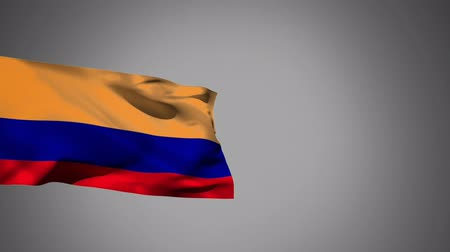 üç renkli : Close up of Russian flag waving against a grey background Stok Video