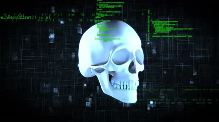 lobe : Digital animation of a rotating skull with a circuit board and interface codes background Stock Footage