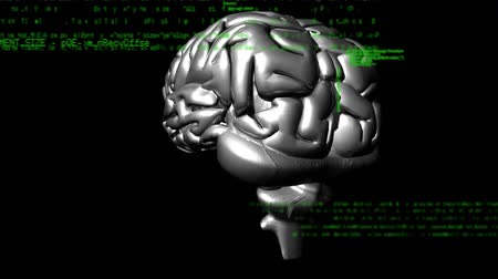 ассоциация : Digital animation of a grey human brain with interface codes running in the background
