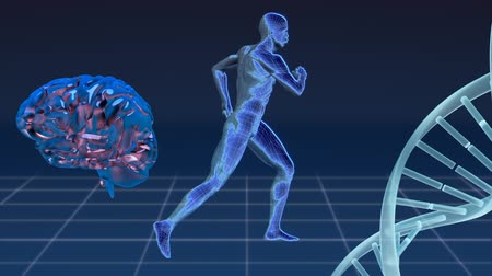 фронтальный : Lateral view of a 3d man jogging in place, blue metallic human brain rotating, and DNA strand in a grid floor background.