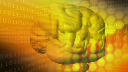 effects on brain : Digital animation of a rotating yellow brain with series of hexagon patterns and moving binary digits on a yellow background Stock Footage
