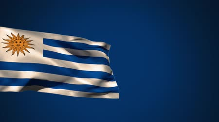 devět : Animation of the flag of Uruguay waving against blue background.