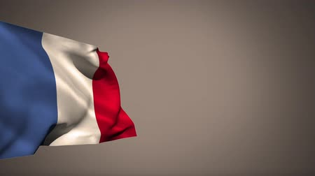 üç renkli : French flag waving against a grey background