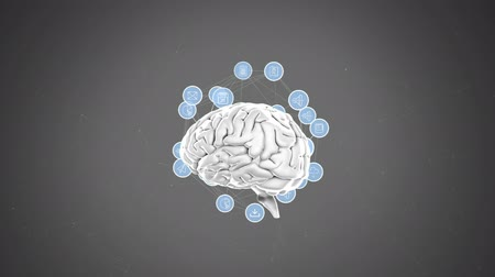 lobe : Digital animation of rotating human brain with labels of different icons in a grey background