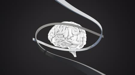 lobe : Digital animation of a brain with ribbons moving around a grey background Stock Footage