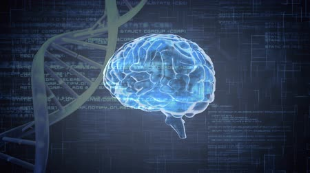 nervous system : Digital animation of a brain and a DNA helix rotating in the foreground. Binary codes and programming codes are running in the background Stock Footage